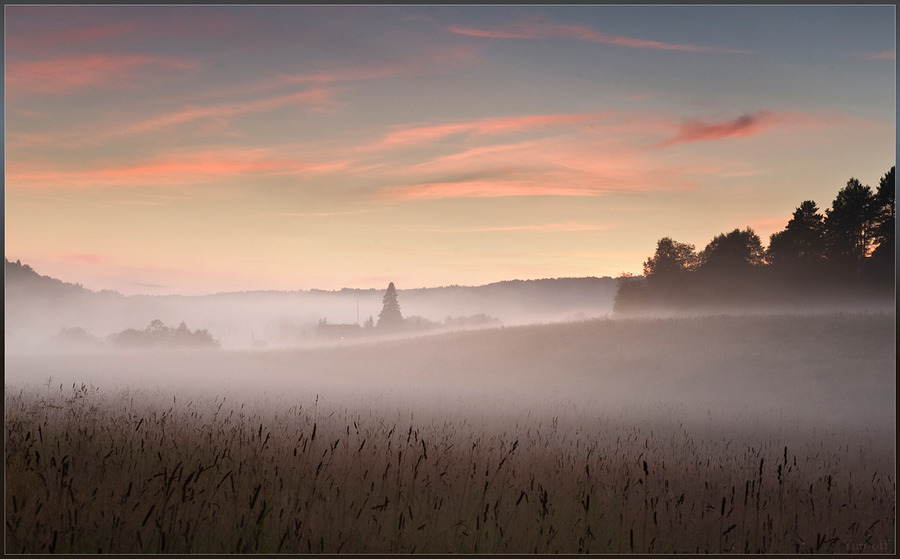 And the window is shining brightly | fog, field