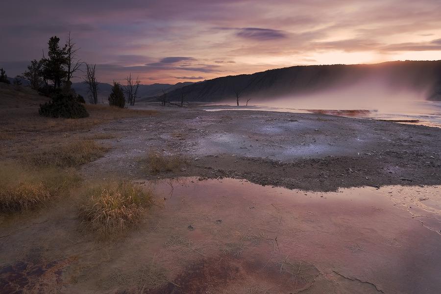 Nature's cataclysms | field, haze, swamp