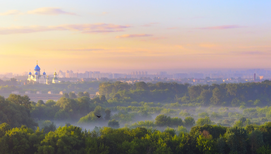 The first beams of dawn | panorama, trees, town, fog