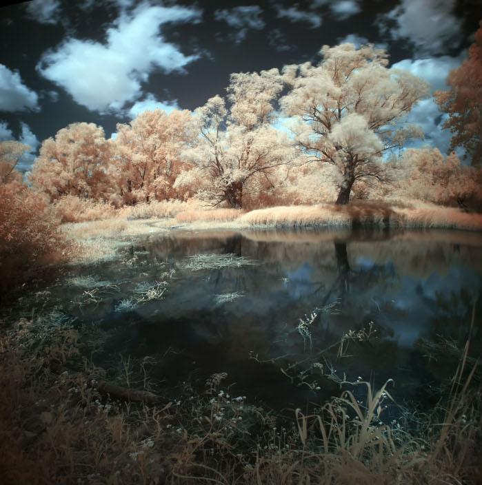 Infrared | lake, infrared, trees