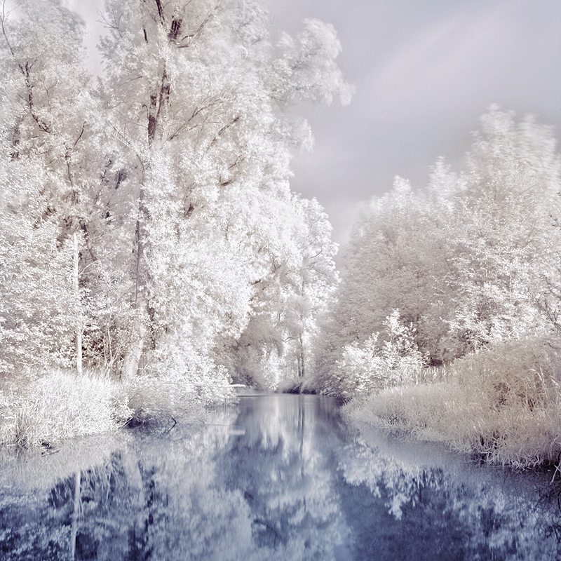 Fairytale | infrared, trees, water