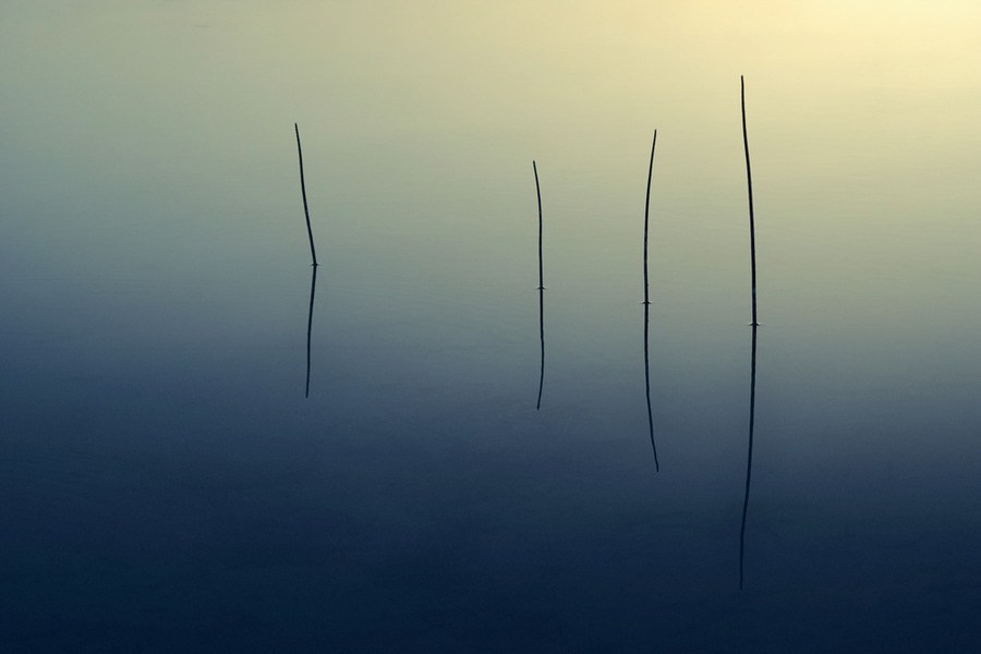A lonely quartet | reflection, water