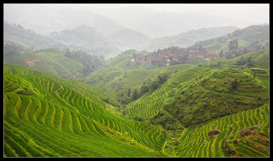 Over rice terraces | mountains, haze, mist, green, rice terraces