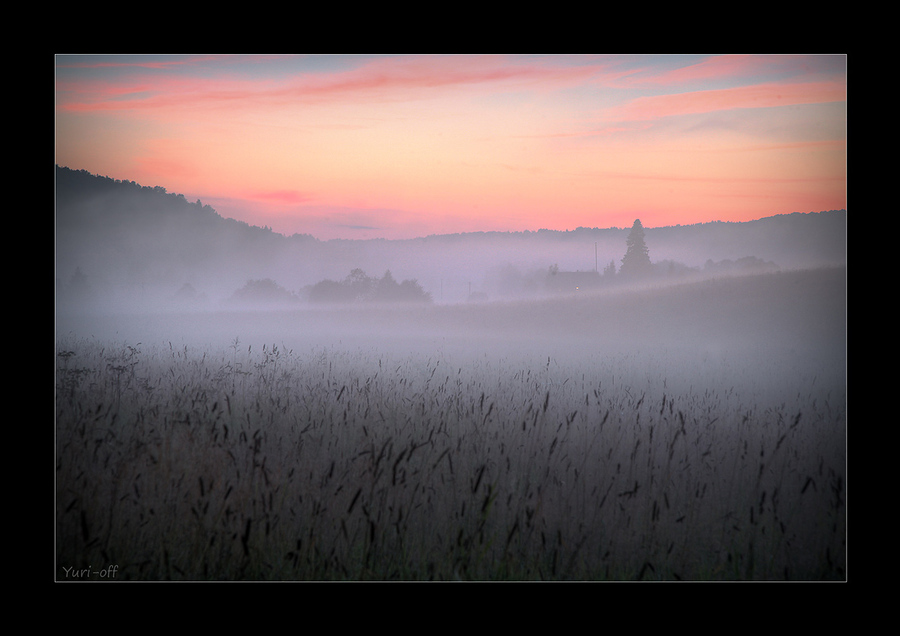 Marvellous dream | haze, sunset, field