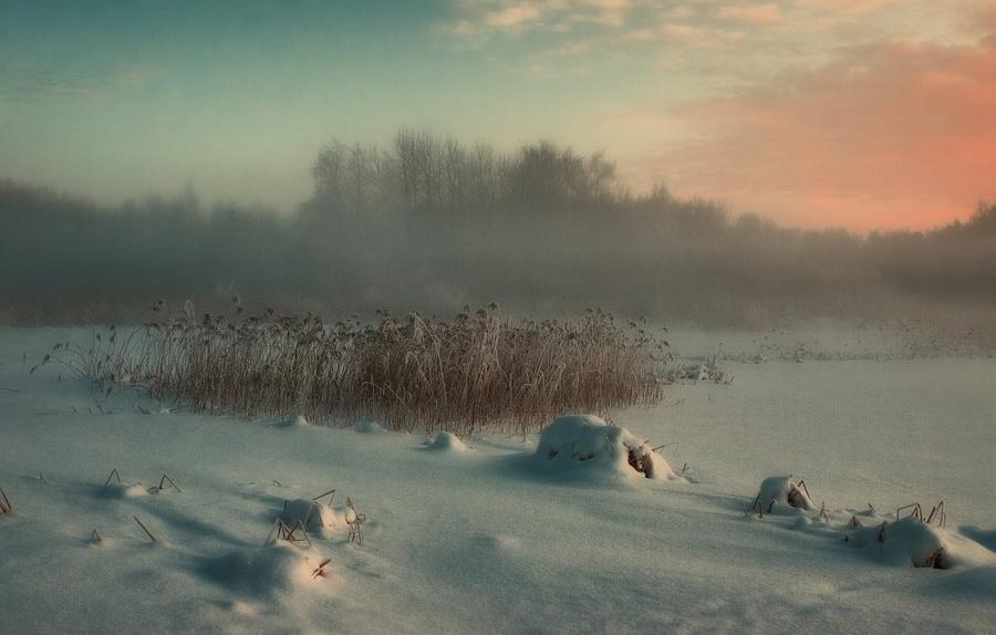 Nature's sleeping | sunset, snow, fog