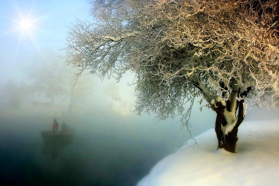 Sailing out of the mist  | tree, mist, winter, people
