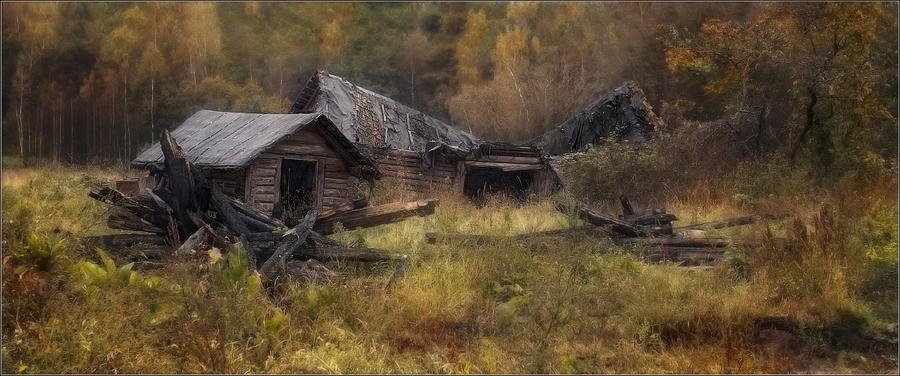 Forsaken house | house, forest, ruins