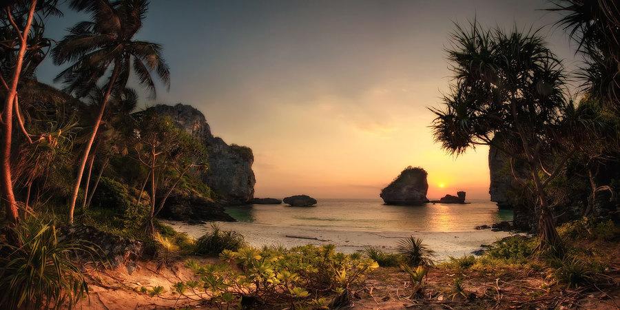 Sea and palms | sunset, sea, rocks, palm