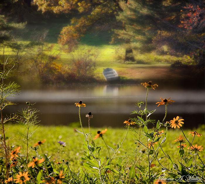 Spring green | spring, green, river, boat