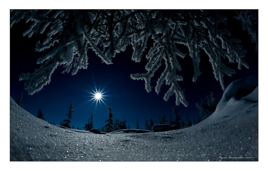 Lunar etudes | winter, ice, forest, sun, frost