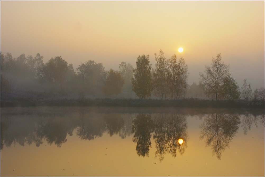 Declining autumn sun | landscape, evening, water , sun , sky  , fog , trees , autumn, reflection , dark
