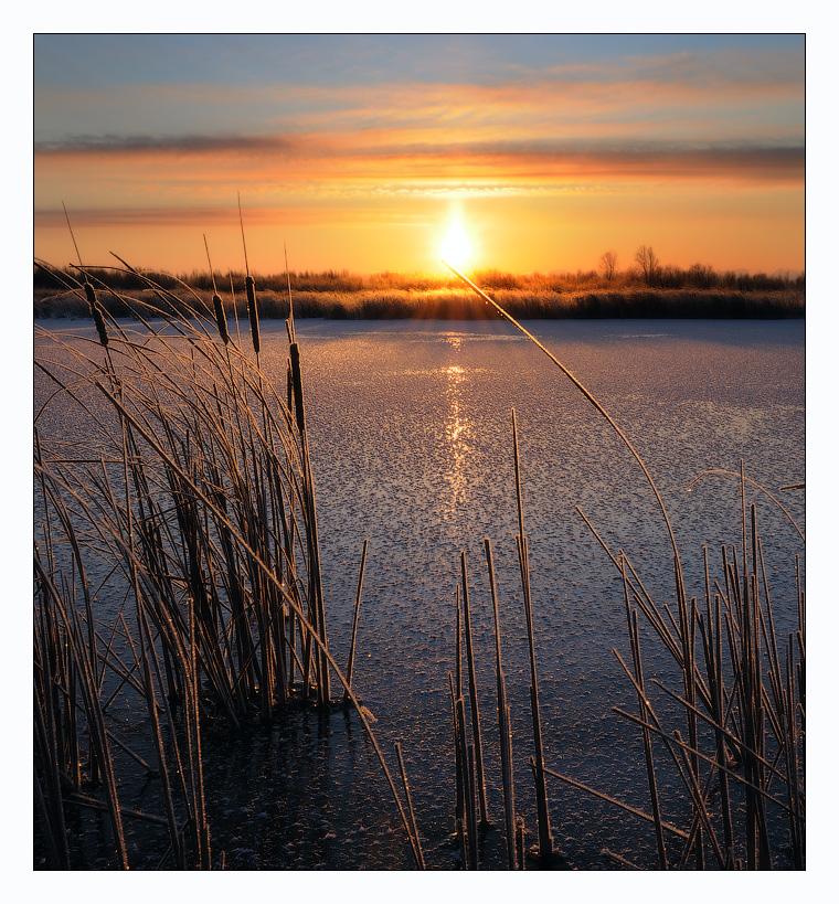 The Sun close-up | the Sun, close-up, river, skyline