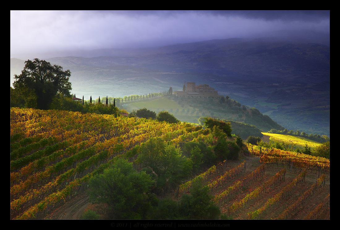 Faraway castle | castle, field, sky, rain