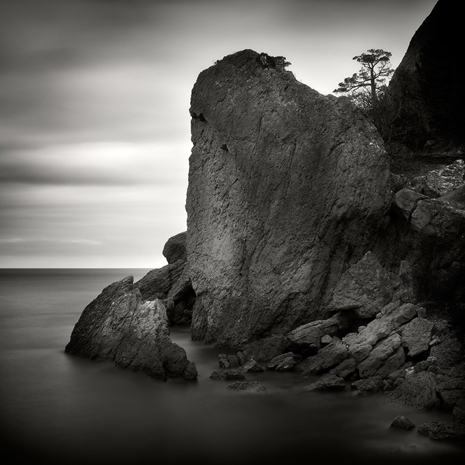 Black and white cliff | black and white, cliff, sea, tree