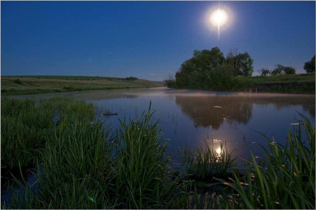 Reflection of a full moon | moon, reflection, lake, tree