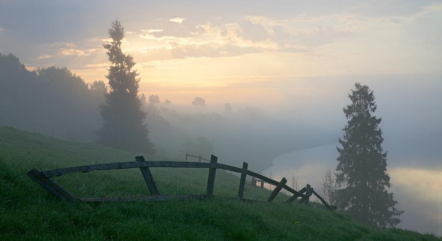 Foggy dawn   fog, sky, fence, cedar