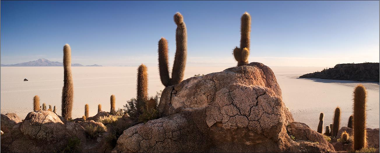 Island of cactuses, Pescadores | Bolivia, panorama, Pescadores, island, cactus, stones , sand, skyline  , sunny, shadow