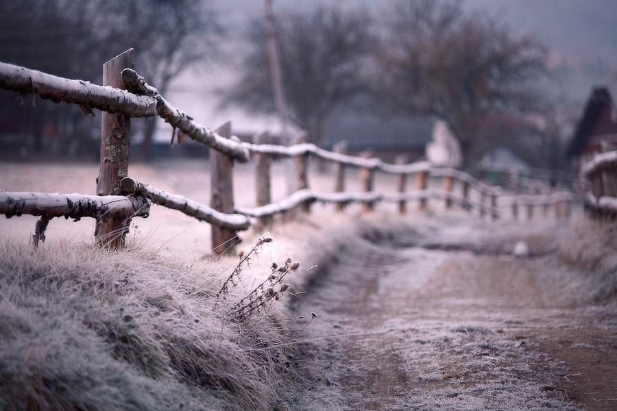 Frosen fence | fence, winter, road, countryside