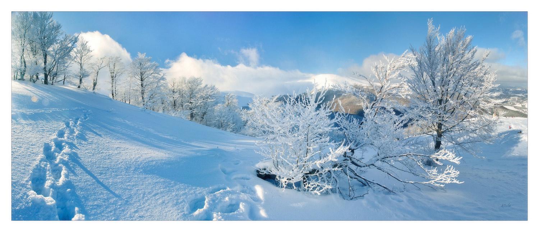 Winter sunny day in Carpathians   landscape, nature, winter, snow, trees, sunny day, Carpathians, clouds, blue sky, footprint