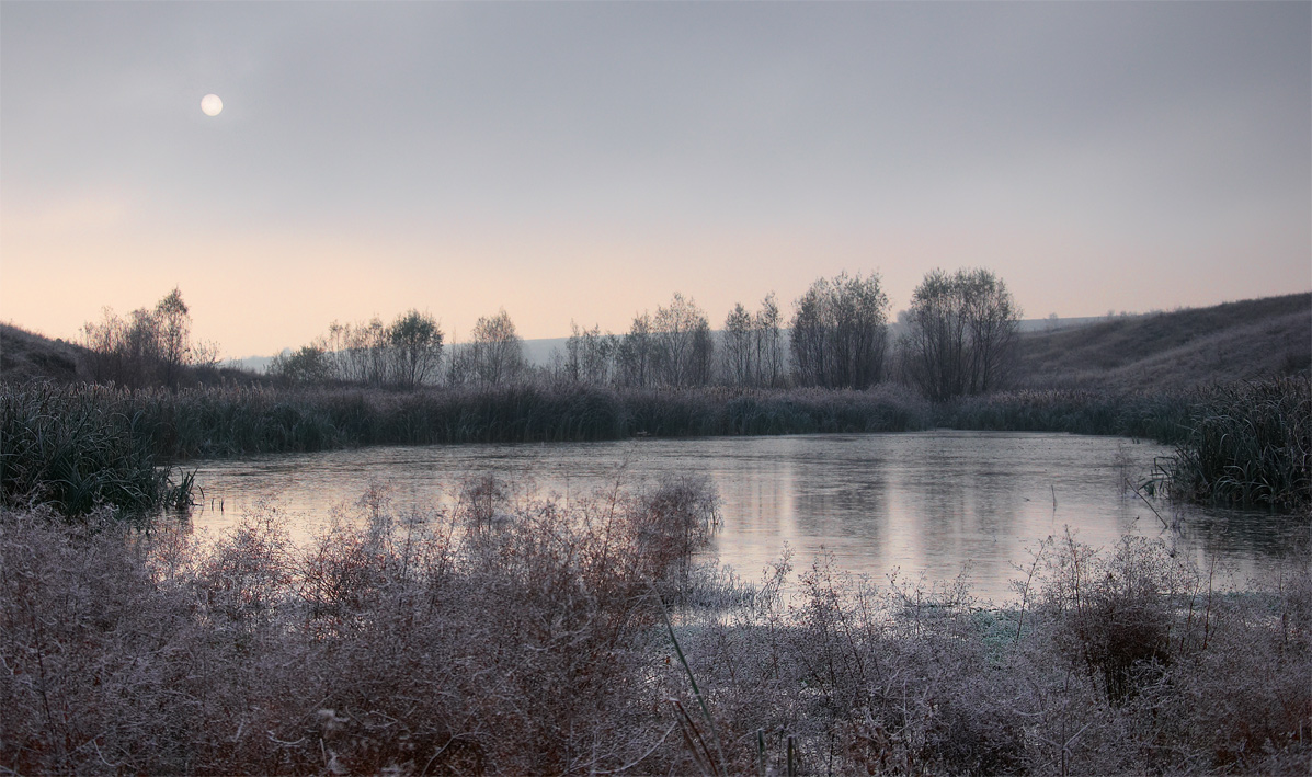 Winter sun | landscape, nature, outdoor, winter, snow, lake, dry grass, frost, sun