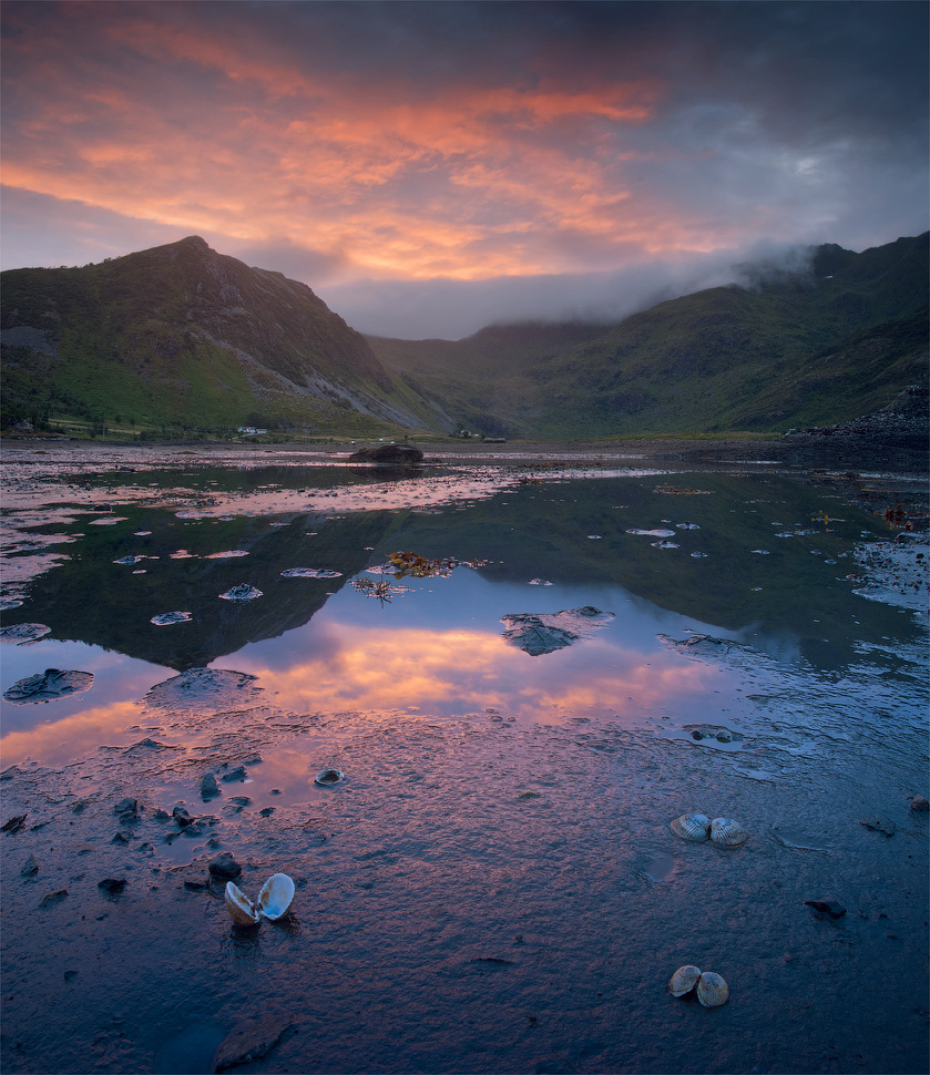 Ebb, Norway | landscape, nature, Norway, ebb, water, sunset, clouds, Lofoten, fjord, mussel
