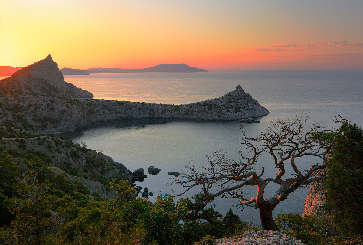 Cape Capchik, Crimea | Crimea , landscape , dawn , sea , mountains, scarlet , cape , tree , sky , Capchik