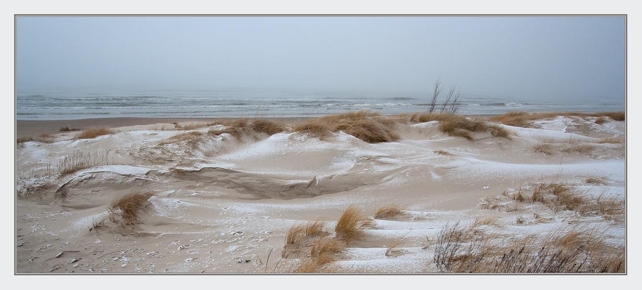 Windy morning | wind, morning, winter, snow