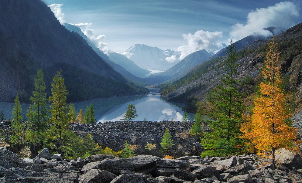 Mountain river and spruces   river, mountain, spruce, hillside