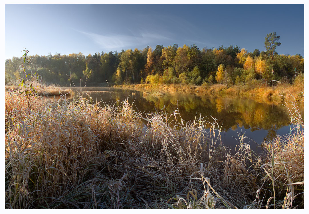 October landscape  | landscape  , water, october, autumn , forest, dry grass, golden, sunny, day, nature