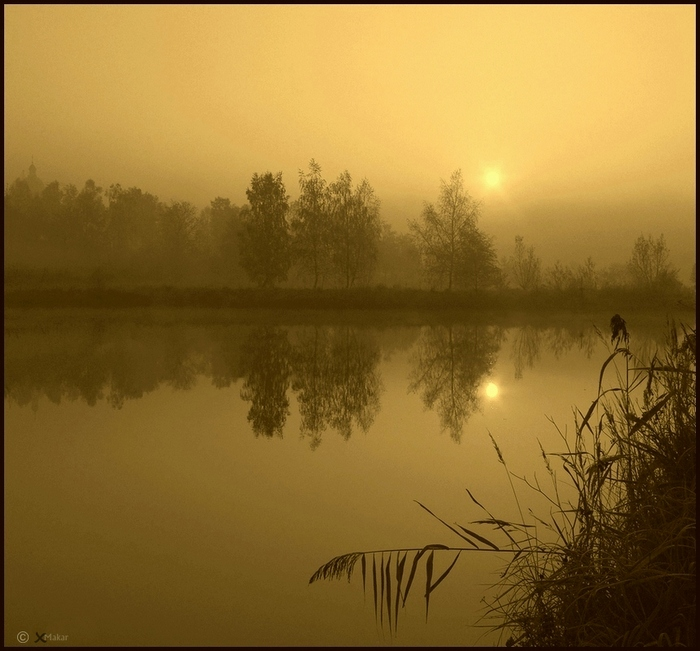 Yellow dawn | yaellow, sun, river, reflection