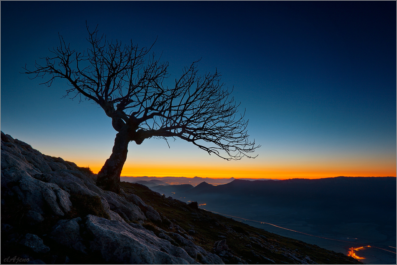 The only one | sunrise, Mountains, tree