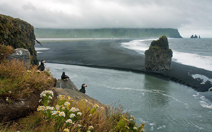 Something unusual | sea, cliff, ubrupt coast, skyline