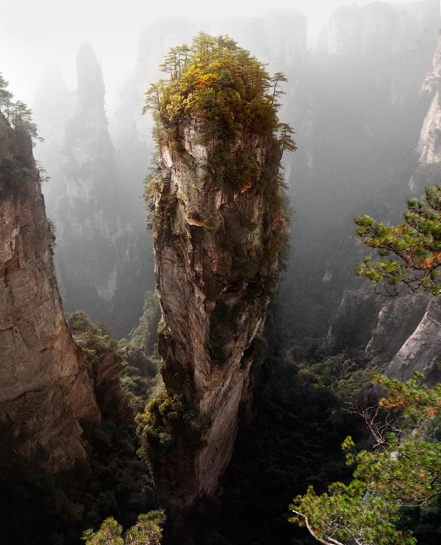 Treelike mountain | mountain, hillside, fog, mist