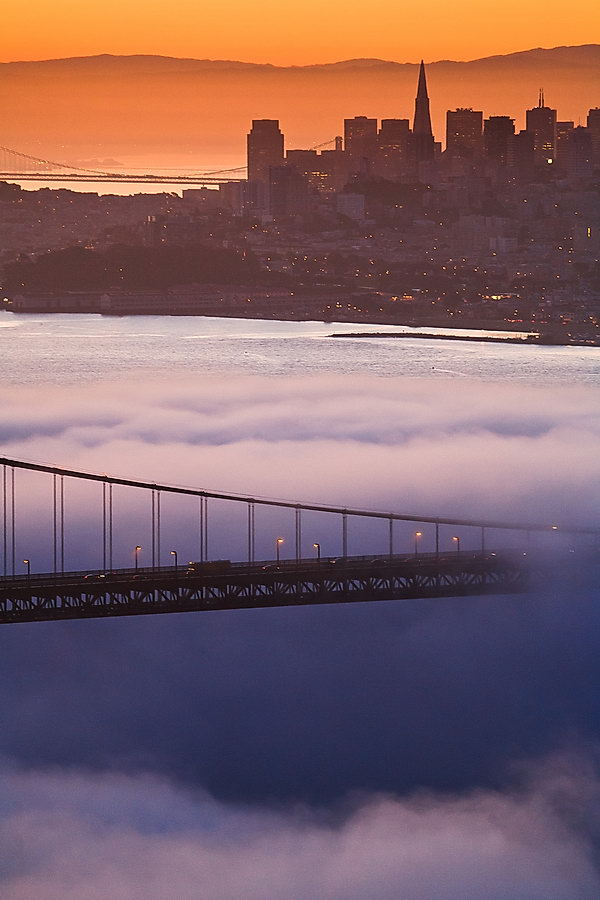 Fog and the brisge | fog, city, bridge, dawn