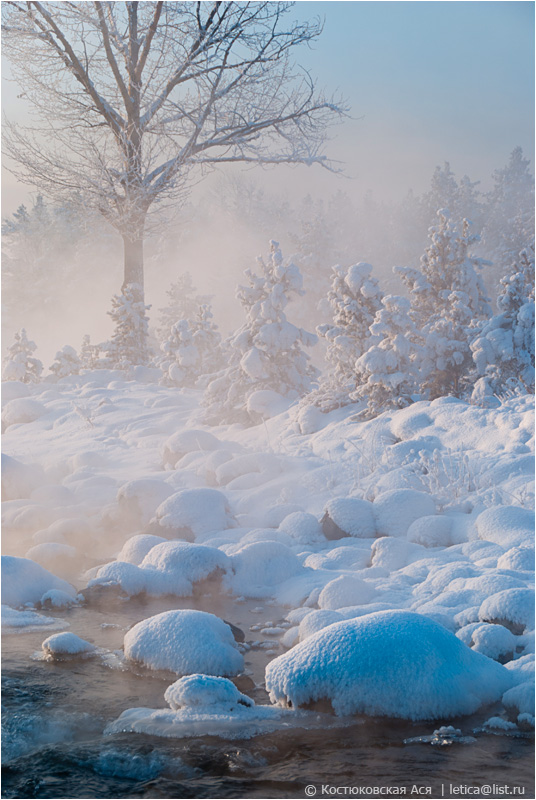 Stones covered with snow | tree, stone, snow, water