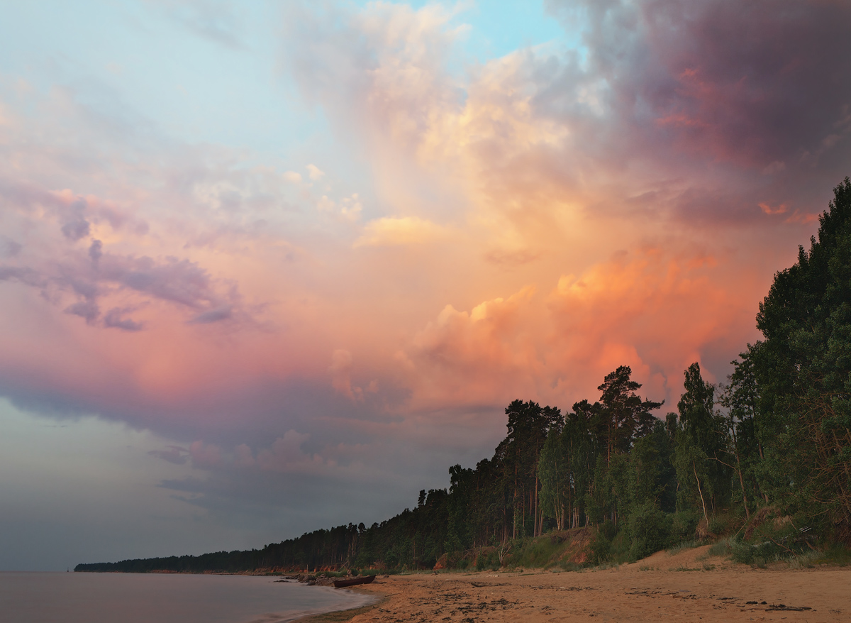 Fiery shore | shore, river, pine wood, orange sky