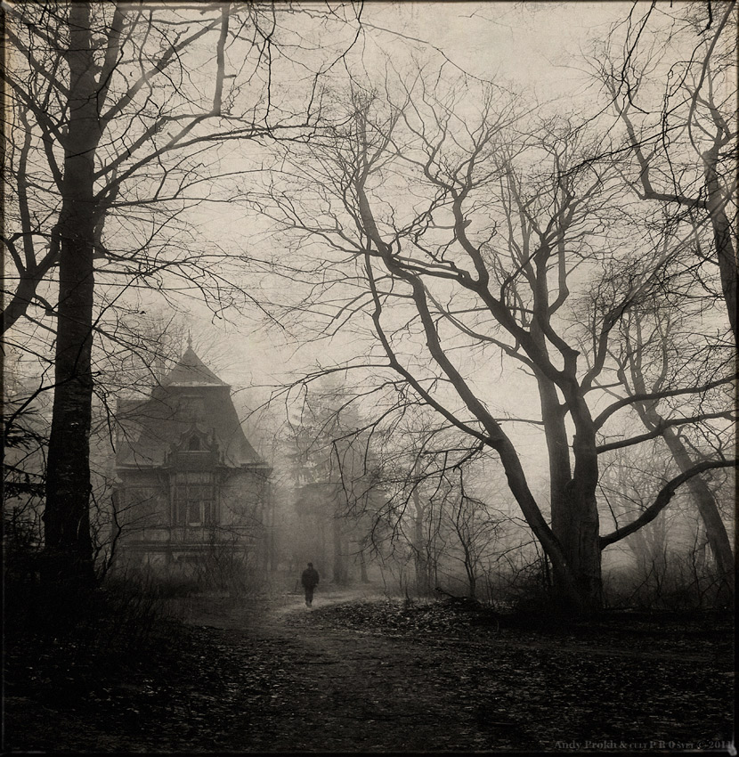 Dracula was here | hades of gray, tree, castle, dusk