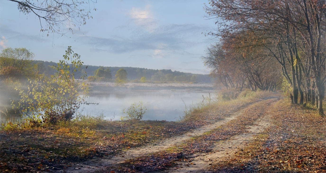 Autumn path | autumn, landscape, river, forest, leaves, trees, fog, path, day, branches