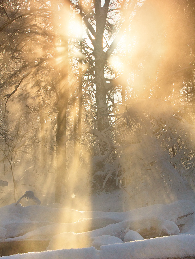 Sunshine and mist | sunshine, mist, snow, winter