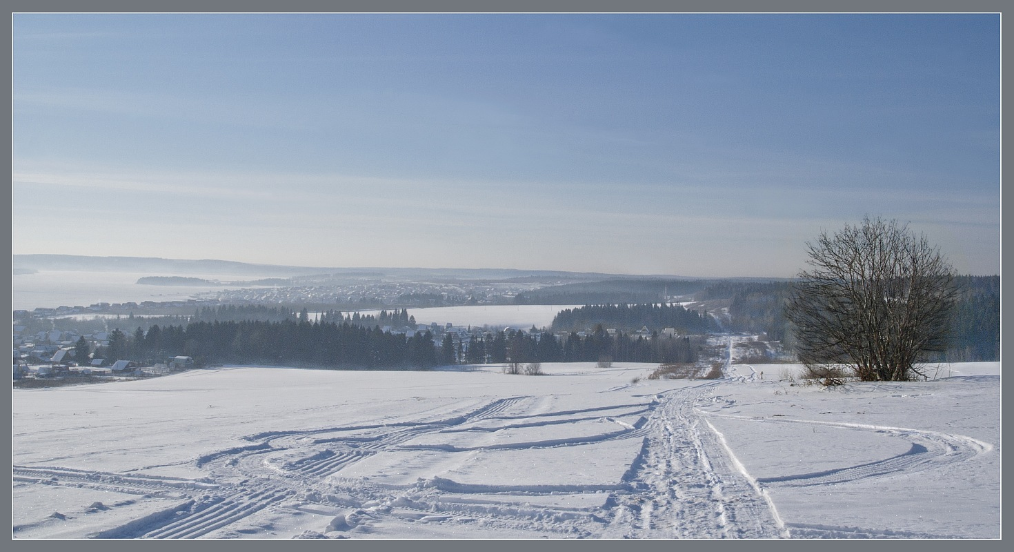 Winter landskape | landscape, nature, winter, forest, tree, snow, field , trace, day, houses