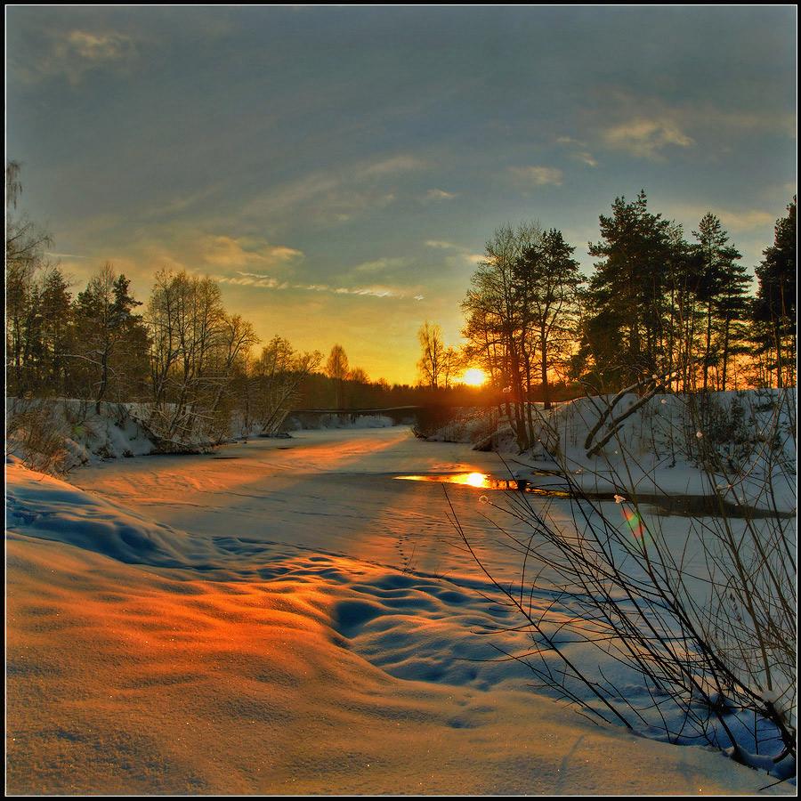 Frosty dusk | frost, duck, sunbeam, clear sky