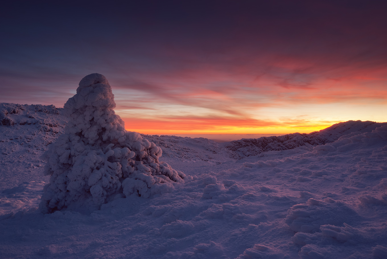World of snow   snow, dusk, ice, winter