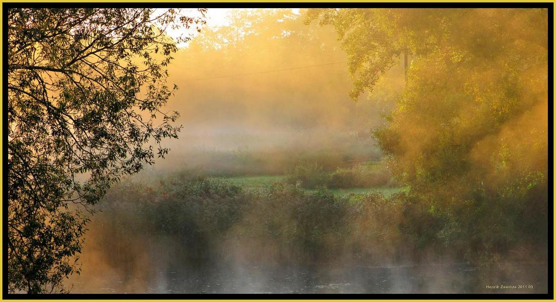 Hail to spring   spring, mist, willow, river