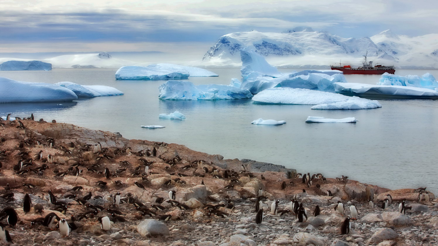 Antarctic, penguins | landscape, outdoor, nature, Antarctic, penguins, water, ice, sky, ship, clouds