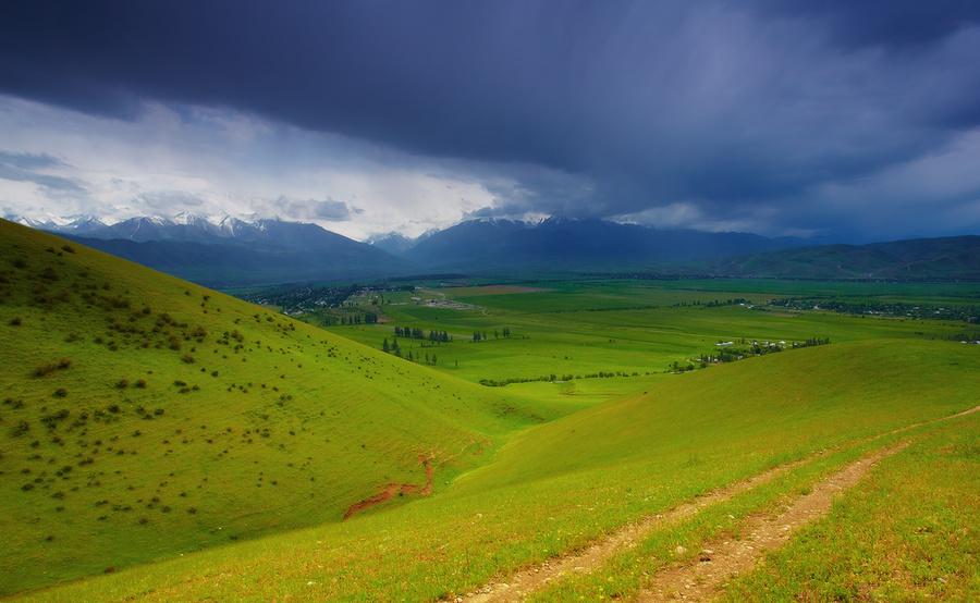 Alpine spring | Alps, meadow, grass, sky