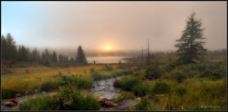 Summer dawn, Buryatia | Buryatia, lake, summer, fog, august, taiga, lush grass , trees, sun, skyline