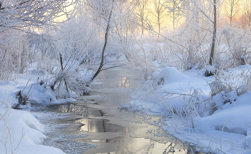 Winter daybreak | winter, daybreak, landscape, morning, water, ice, light, trees, snow, cold
