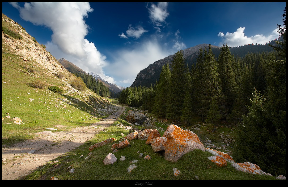 Mountain road | road, mountains, clouds, forest