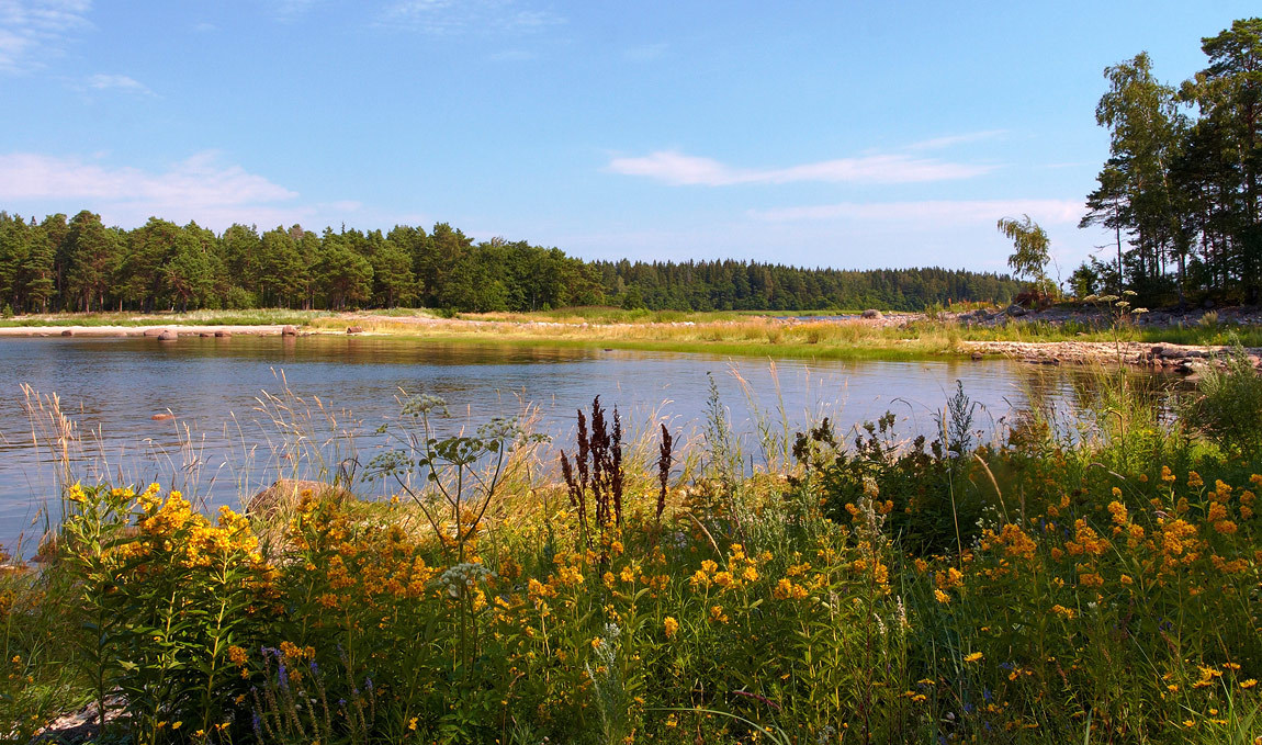 Summertime in the countryside | countryside, summertime, lake, high grass