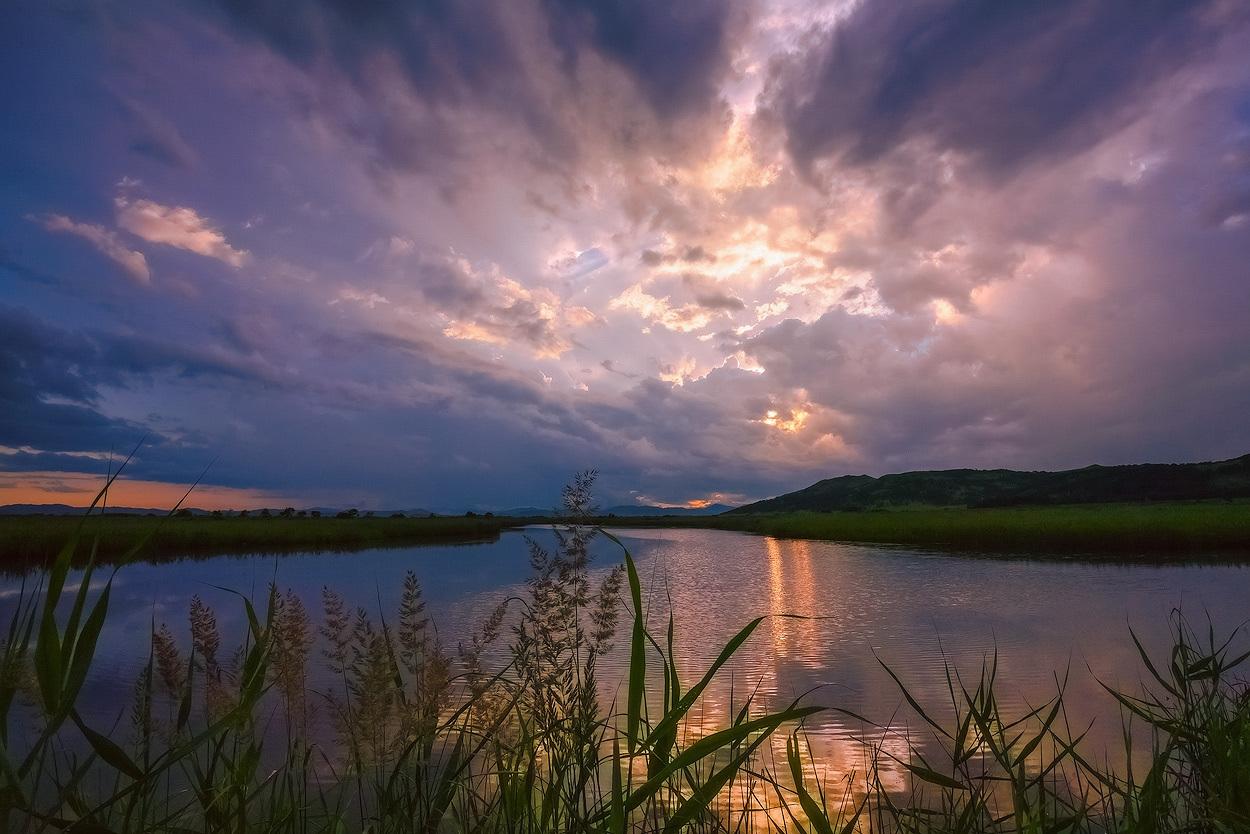 River, landscape | landscape, river, summer, reed, sky, sunshine, clouds, ripples, grass, skyline